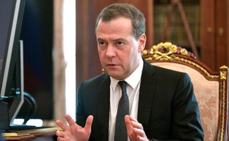 Медведев поручил правительству ужесточить наказания за нанесения ущерба окружающей среде