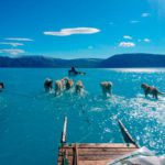 The ices of Greenland