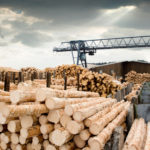 East of the United States was covered by a wave of emissions from the woodworking industry