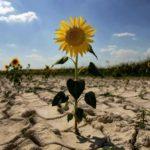 Глобальное потепление набирает обороты